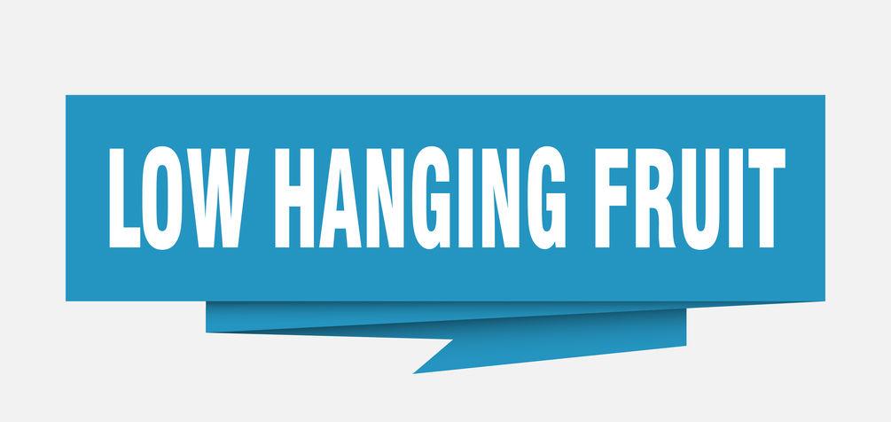 Low Hanging Fruit Banner